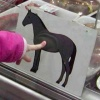 Would you consider eating properly labelled horsemeat meals if available?